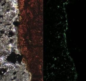 南太平洋海底火山发现奇特微生物 在火星上也可能生存