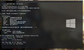 Windows 软件包管理器 WinGet安装及使用教程