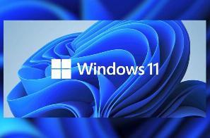 Windows 11 新 bug 导致安全中心部分功能打不开