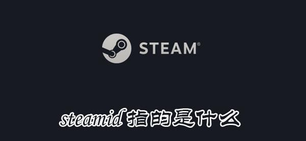前沿科技信息篇:steamid指的是什么