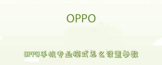 参数 oppoPhone摄影业余形式怎样配置参数-U9SEO