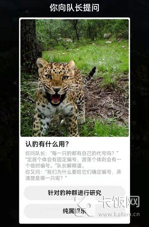 认豹有什么作用