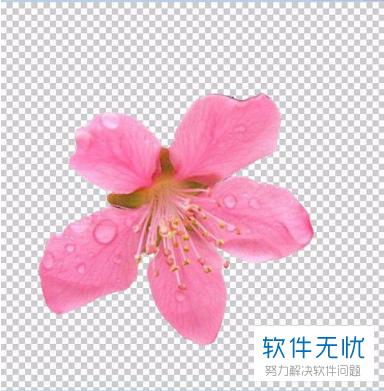 图片 若何用photoshop PS将一张图片上的部门归并到另外一张图片上-U9SEO