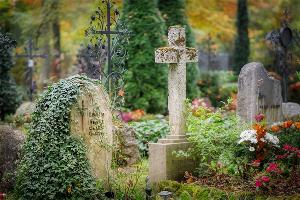 """5人共用一座坟!日本推出""""共享坟墓"""",网友:要是祭奠日期撞了还得排队"""